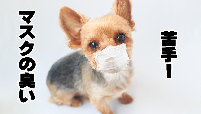 マスクの臭い
