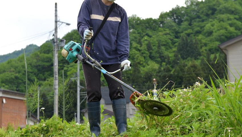 草刈り費用の相場目安