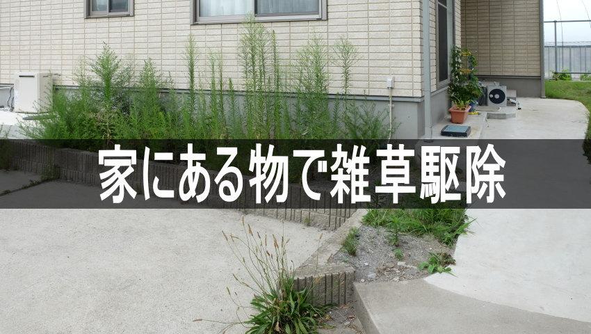 家庭にある物で簡単にできる雑草駆除